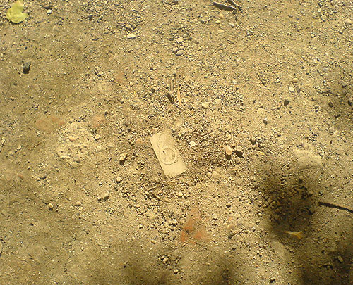 Ipod Fossil
